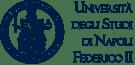 Mario Savini Università di Napoli